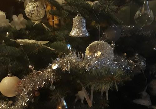 Mūsu īpašā Ziemassvētku eglīte