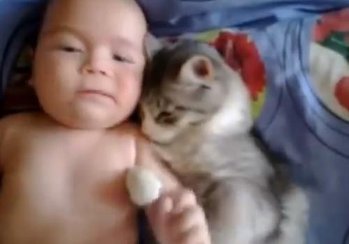 VIDEO: kaķēns+mazulis= mīlestība