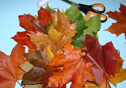 Pušķis rudens krāsās