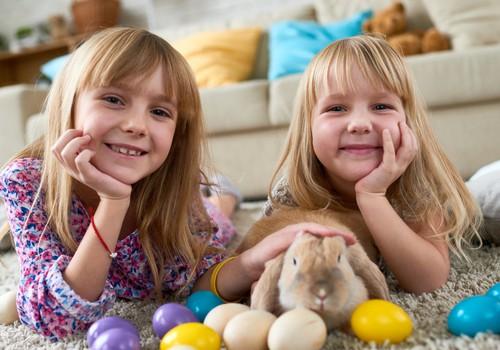 Kā pavadīt Lieldienas ne tikai jautri, bet arī droši?