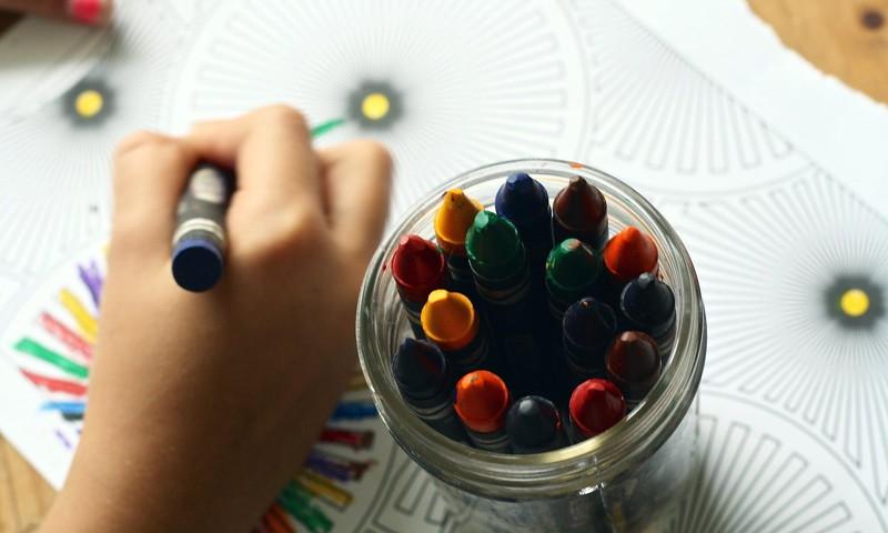 Šuplinska: ja pirmā attālinātā mācīšanās nedēļa nebūs sekmīga, pagarināsim pavasara brīvlaiku un mācību gadu