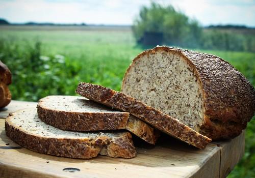 Sprīdītim palīdzēja, palīdzēs arī Tev jeb kāpēc ēst rudzu maizi?