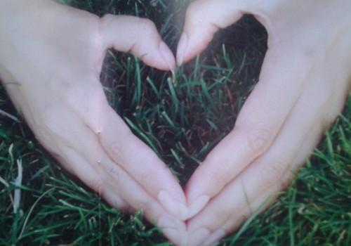 Nr.11 Laurlapa: Manai laimei arī kaut kas traucē