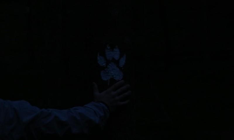 Uuuuuu Vilkaču taka Raudas mežā