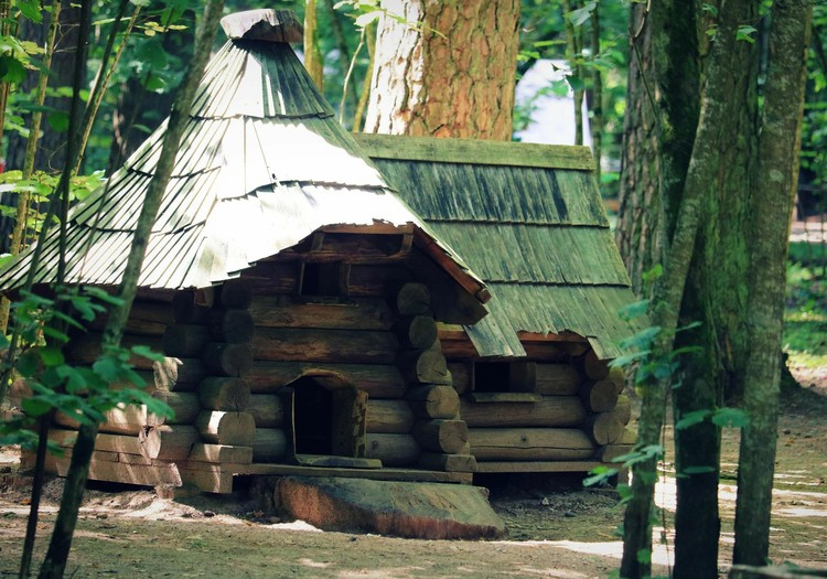 Meža valstība- Tērvetes dabas parks