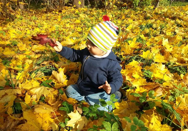 Iekāpt rudens zelta kurpēs