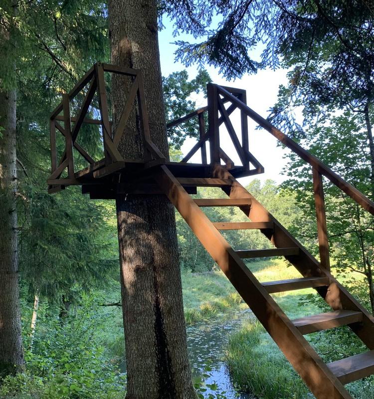 VASARAS GIDS: Cīravas mežaparks