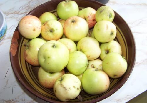 Pašas gatavots ābolu biezenītis pašiem mazākajiem