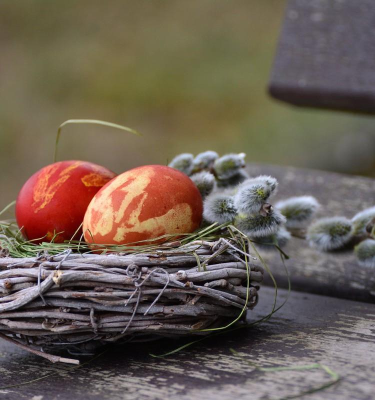 FOTOkonkurss: Mūsu skaistākā Lieldienu ola