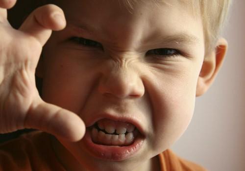 Divgadnieka nejaukā uzvedība