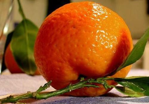 Oranžais kārums- mandarīns