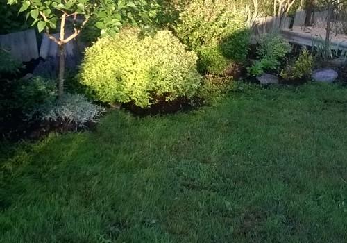Manas dārza dienas un nedienas