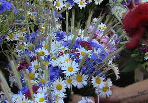 INTERESANTI: Vasaras ziedu horoskopi mammām un bērniem