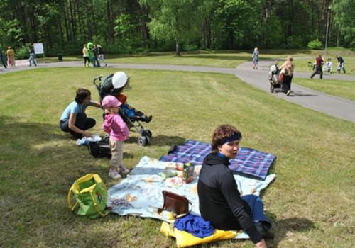 Paldies tiem, kuri atnāca uz Māmiņu Kluba pikniku!
