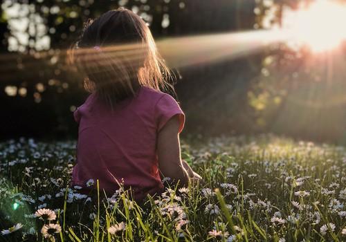 5 zāļu tējas bērna mieram un veselībai