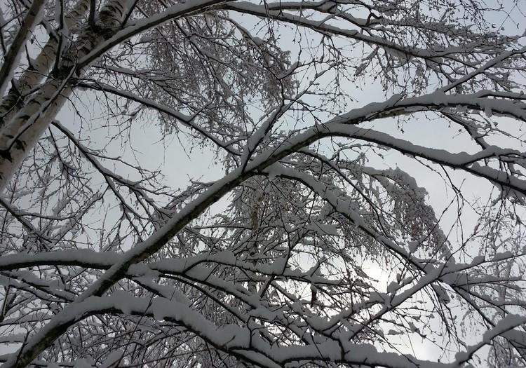 Prieks par sniedziņu