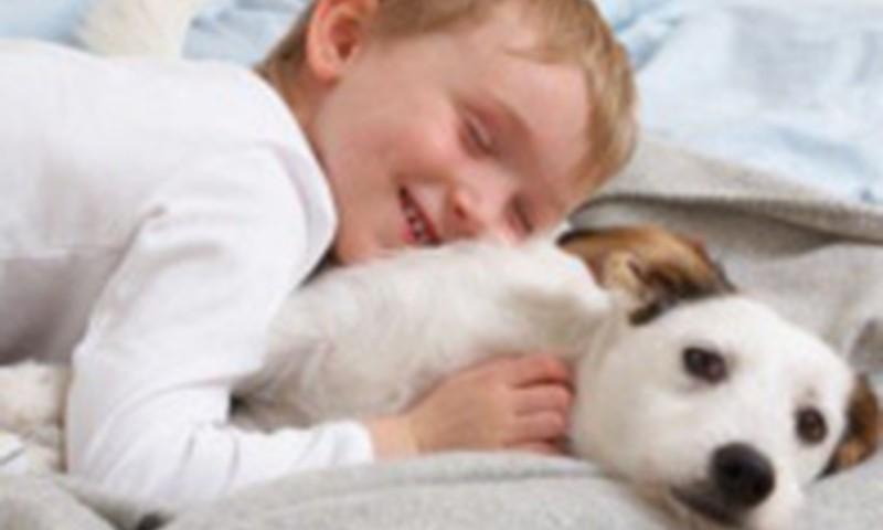 Kad un kāpēc bērnam vajadzīgs mājdzīvnieks?
