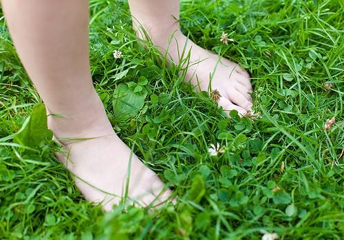 Mazā staigātāja enciklopēdija: pēdas