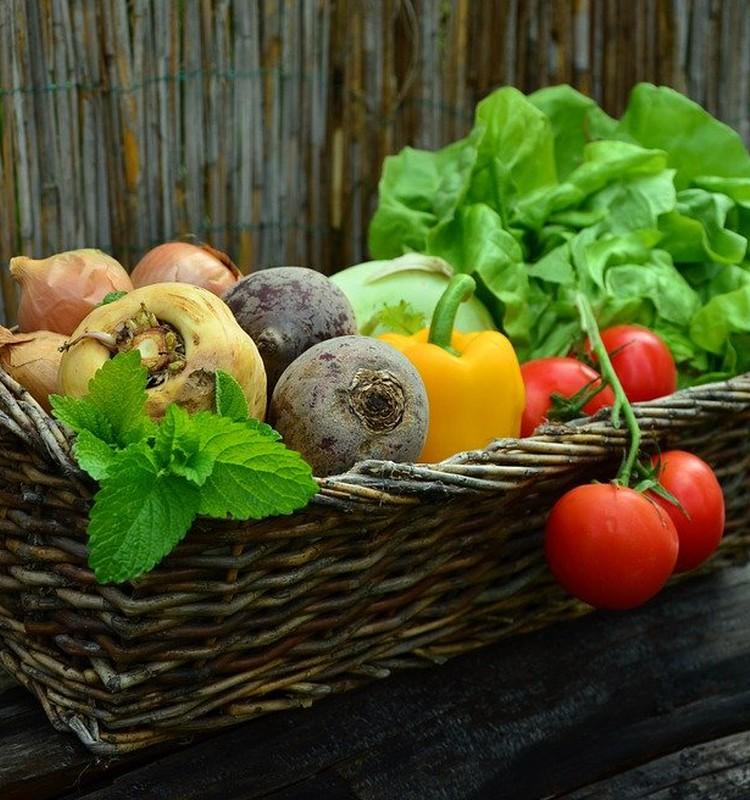 Iegādājies savai ģimenei pārtiku internetā. TOP 25 veikali