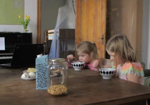 Vai augu dzērieni uzturā var aizstāt govs pienu?