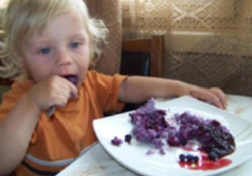 Rīsu- melleņu putra brokastīm
