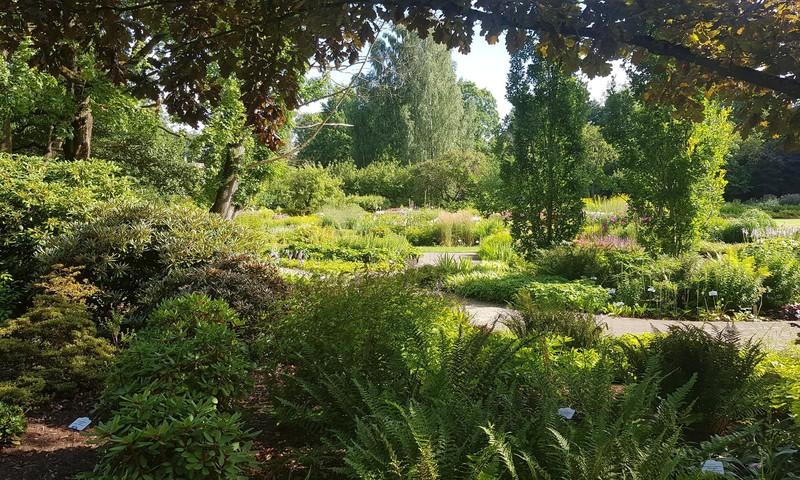 LU Botāniskais dārzs