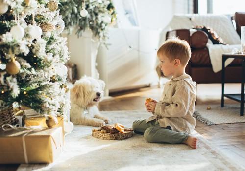 Ziemassvētku dāvanu ceļvedis: Idejas dāvanām 3-4 gadus veciem bērniem