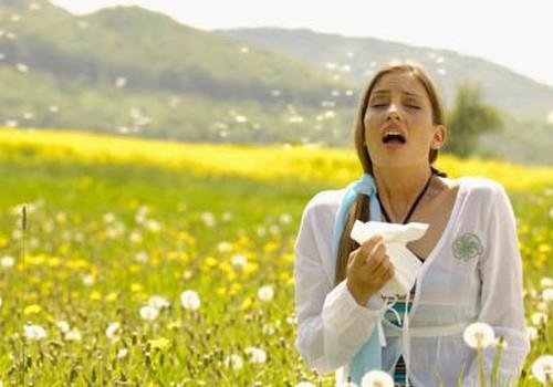 Pavasara vēstnese: alerģija