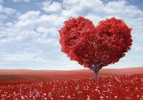 Mūsu Valentīna diena! :)