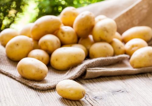 Gatavo ar bērnu: CETURTĀ nedēļa! Kartupeļi!