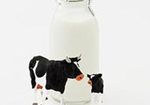Govs piena lietošanai agrā zīdaiņu vecumā ir arī priekšrocības!