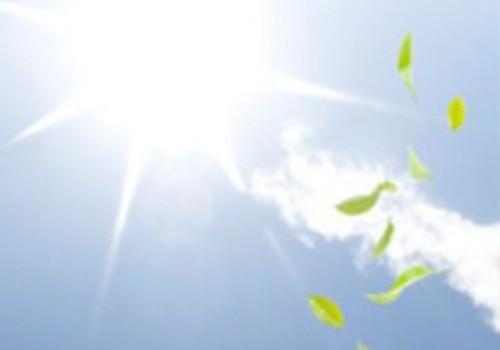 Dienas gaisma var palīdzēt cīņā ar aptaukošanos