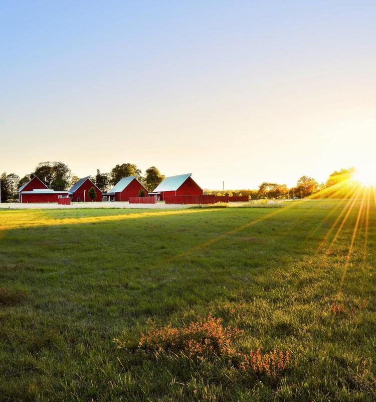 Zināmi saulaino fotobilžu konkursa uzvarētāji!