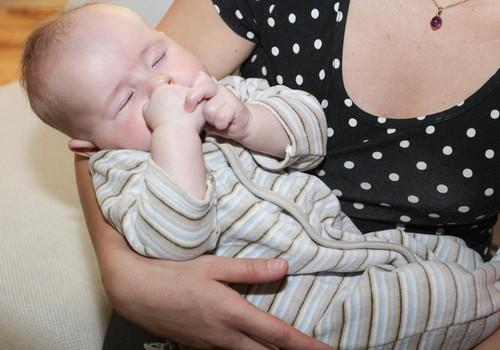 BEZMAKSAS zīdīšanas konsultācijas Bērnu slimnīcā