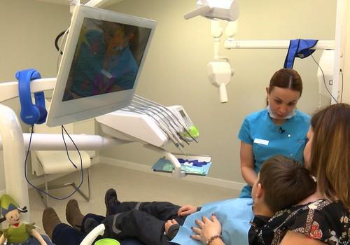 VIDEO: Mazo zobiņu veselība