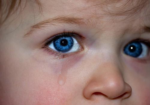 Fejiņa dodas uz bērnudārzu: Pirmā nedēļa ar histērijām un asarām