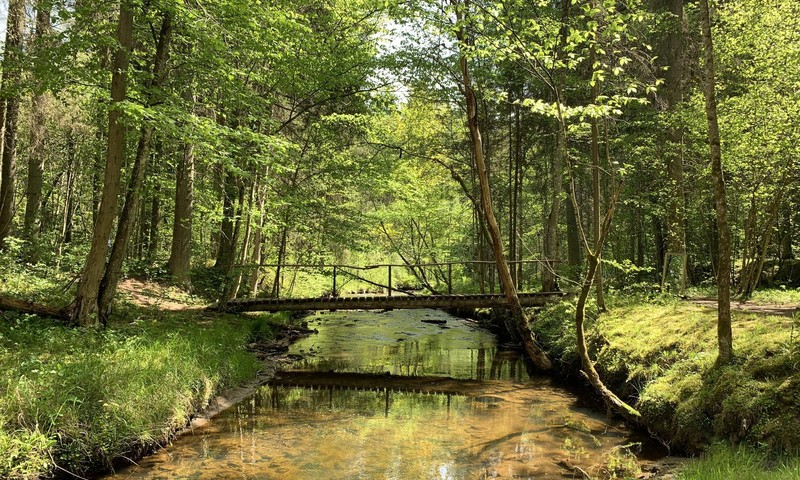 VASARAS GIDS: Cecīļu dabas takas