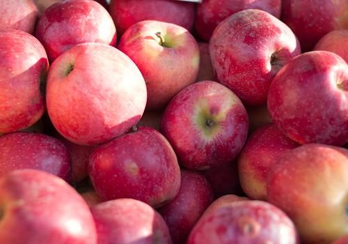 8 vērtīgi pārtikas produkti topošajām māmiņām