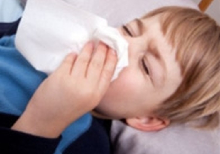 Putekļu ērcīte un imunitātes stiprināšana bērnam