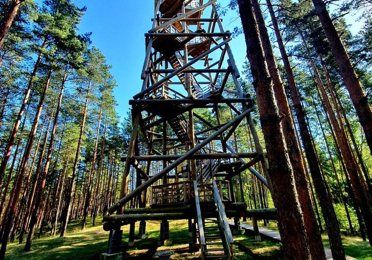 Bumbu skatu tornis