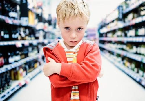 Bērna temperamentam ar viņa uzvedību ir saistība! Uzzini lekcijā pie Diānas Zandes!