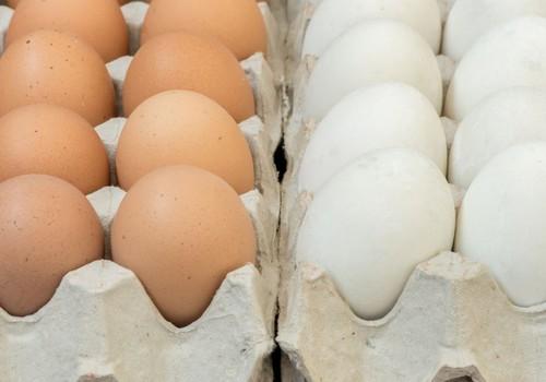 Ola – tās  uzturvērtība un loma veselībai