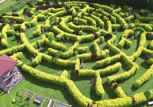 Beverīnas labirinti - lieliska diena ģimenei