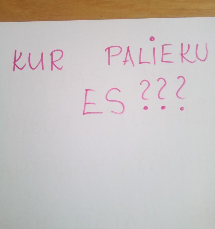 Nr.4 Ilvija: Kur esmu ES?