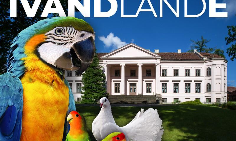 """Īvandes muiža pārtop par Īvandlandi ģimenēm ar eksotisku putnu un trušu dārzu un multimediālu izstādi """"Dzīvās gleznas"""""""