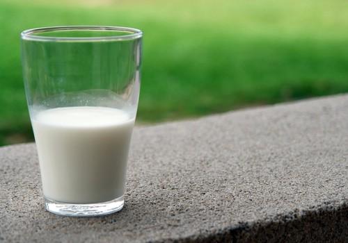 Stipriem kauliem, zobiem, nerviem un muskuļiem: cik kalcija un D vitamīna nepieciešams mazam bērnam?