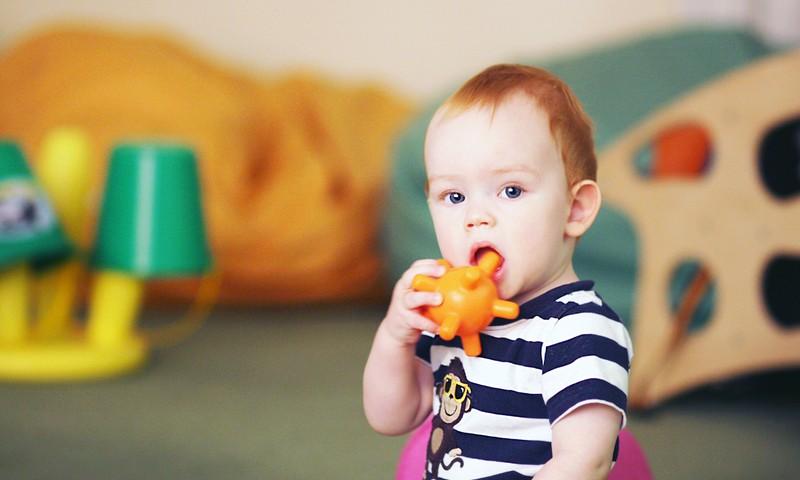 EKSPRESKONKURSS Facebook.com! Kuru mājdzīvnieku Tavs mazulis iemācījās atdarināt pirmo?