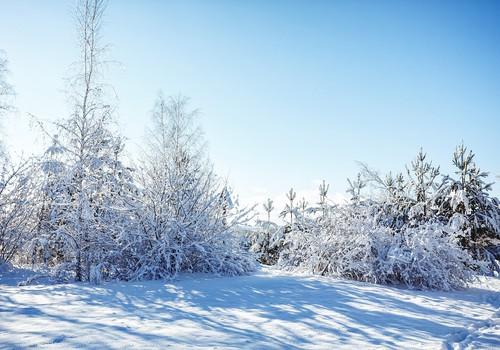 Aukstāks laiks nav šķērslis ratu pastaigām
