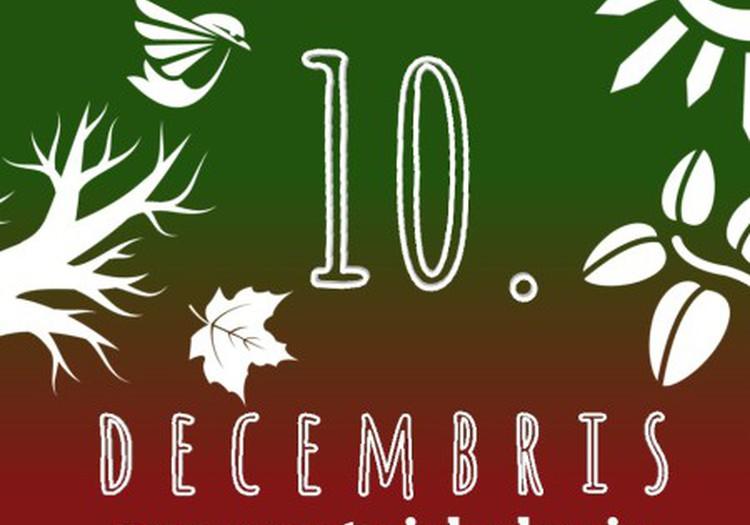 10. decembris – Āra aktivitāšu saraksts #mansmaterialuskapis