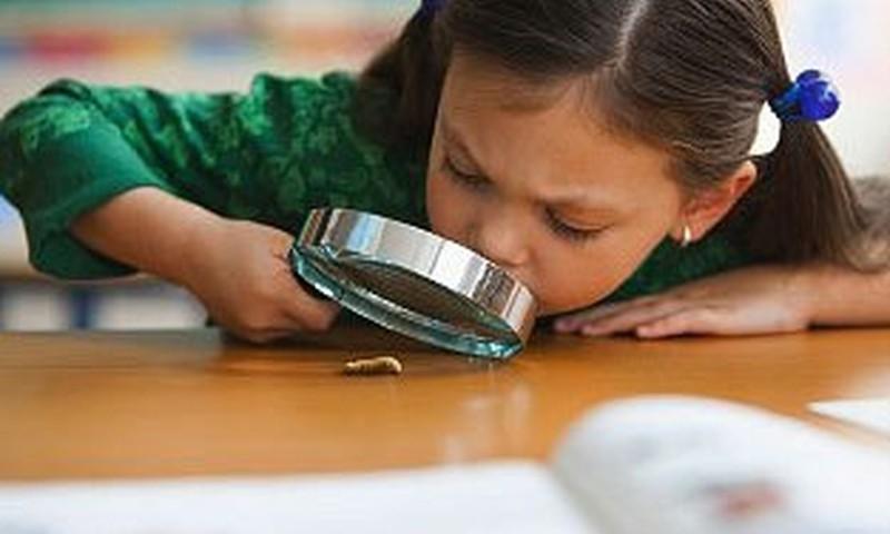 Kā cīnīties ar bērna nevēlēšanos mācīties?